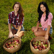 Beautiful women near baskets of apples — Stock Photo #33712605