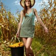 Stock Photo: Womfarmer carrying bucket of corn cobs