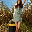 Woman farmer carrying a bucket of corn cobs — Stock Photo