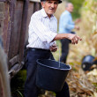 Old mat corn harvest holding bucket — Stockfoto #34772103