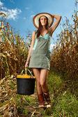 Woman farmer carrying a bucket of corn cobs — Stock Photo