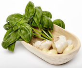 Fresh garlic and basil in a wooden bowl — Stock Photo
