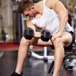 Handsome man working with heavy dumbbells in the gym — Stock Photo #38121179
