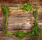 Herbs frame — Stock Photo