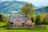 Old shed and haystacks — Stock Photo