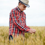 Teenage boy in a wheat field — Stock Photo #48409453