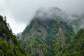 Misty mountains — Stock Photo
