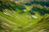 Hiking trail in the Romanian mountains — Stok fotoğraf