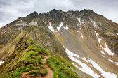 Hiking trail in the Romanian mountains — Stockfoto