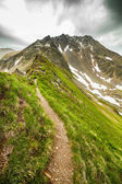 Hiking trail in the Romanian mountains — Zdjęcie stockowe