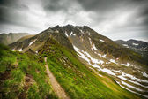 Hiking trail in the Romanian mountains — Foto de Stock