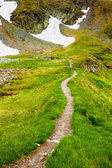 Hiking trail in the Romanian mountains — Stock fotografie