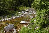 Latoritei river — Stock Photo