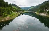 Lake Galbenu in Romania — Stock Photo