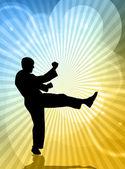 Karate — Stock Photo