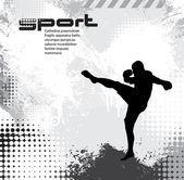 Sport. Karate illustartion — Stock Vector
