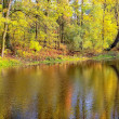 Lake in autumn — Stockfoto