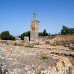 Volubilis Roman old city, Morocco — Stock Photo #31765625