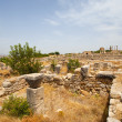 Volubilis Roman old city, Morocco — Stock Photo #31766109