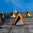 Windows on the tiled roof — Stockfoto