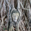 Buddha head encased in tree roots at the temple of Wat Mahatat in Ayutthaya ,Thailand. — Stock Photo