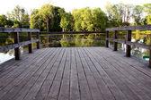 A small bridge on the lake — Stock Photo