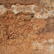 Grunge wall of the old house. Textured background — Stock Photo