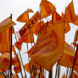 Flags during a protest — Stock Photo