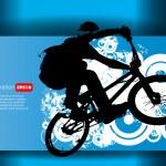 Постер, плакат: BMX cyclist