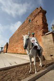 Royal mounted guard on Arab hors — Stock Photo