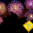 Australia Fireworks Happy New Year — Stock Photo #16759857