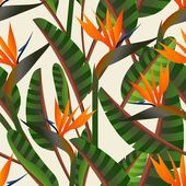 Bird of the paradise flower pattern — Stock Vector