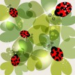 Transparent clover and ladybug background — Stock Vector