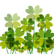Green transparency clovers — Stock Vector