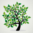 Concept leaves tree — Stock Vector #27643143