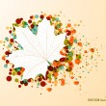 Fall season bubble composition leaf shape EPS10 file background. — Stock Vector #30761415