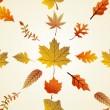 秋の葉のシームレスなパターン背景。eps10 ファイル — ストックベクタ