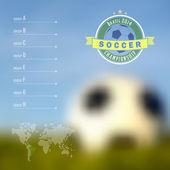 Brazil soccer championship infographic — Stock Vector