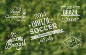 Brazil 2014 vintage label set — Stock Vector