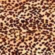 Stock Photo: Leopard print
