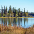 Northwest lake — Stock Photo