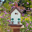 Little white birdhouse — Stock Photo #14703221