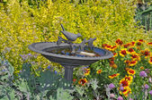 Decorative birdbath — Stock Photo