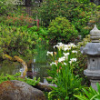 Lush green asian garden — Stock Photo