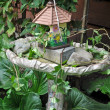 Stock Photo: Birdhouse and birdbath