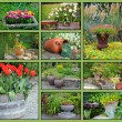 Garden planter collage — Stock Photo