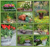 Garden planter collage — Stock Photo