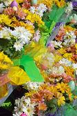 Töpfe mit Blumen — Stockfoto