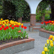 Stock Photo: Tulip courtyard