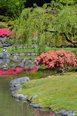 Colorful japanese garden — Stock Photo